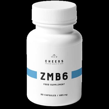 ZMB6 Premium
